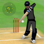 Smashing Cricket – a cricket game like none other 3.0.2 MOD Unlimted Money