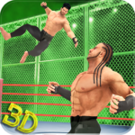 Tag Team Wrestling Superstars Fight Hell In Cell MOD Unlimted Money