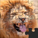 Puzzles for Adults no internet MOD Unlimted Money
